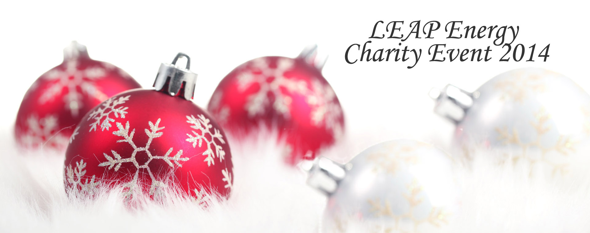 LE_charity_2014